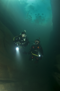 Multilevel Divers